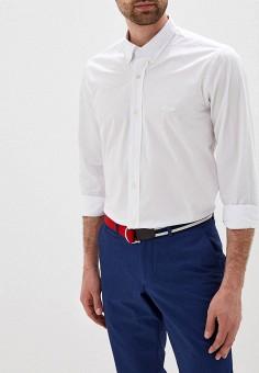 7b4bc579d8f1e4d Рубашка, Galvanni, цвет: белый. Артикул: GA024EMEUTE7. Одежда / Рубашки