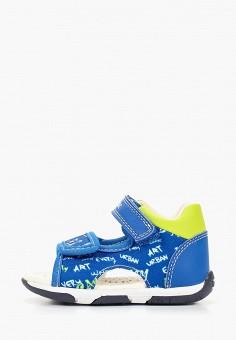 90661d741 Сандалии, Geox, цвет: синий. Артикул: GE347ABDMKB2. Мальчикам / Обувь /