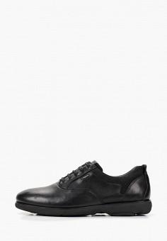 Купить мужские туфли дерби от 6 300 тг в интернет-магазине Lamoda.kz! 460f2475e57