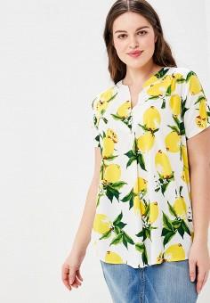 21146e05880 Купить женские блузы и рубашки больших размеров Indiano Natural ...