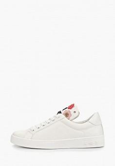 a63bdb40 Кеды, Keddo, цвет: белый. Артикул: KE037AWEKIL3. Обувь / Кроссовки и
