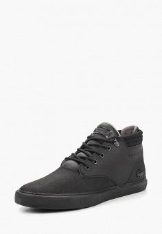 Купить мужскую обувь LACOSTE (ЛАКОСТ) от 3 840 руб в интернет ... 09c993d8784