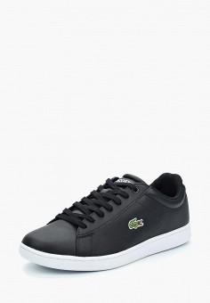 2dabc299 Купить мужскую обувь LACOSTE (ЛАКОСТ) от 3 840 руб в интернет ...