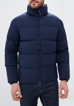 Пуховик, Lacoste, цвет  синий. Артикул  LA038EMCRMZ3. Одежда   Верхняя  одежда 8c0b1771d54