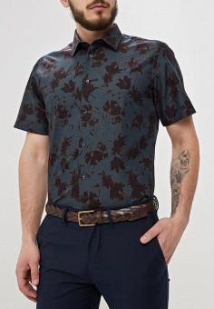 73f05069b7e Купить мужские рубашки с коротким рукавом премиум-класса от 4 310 ...