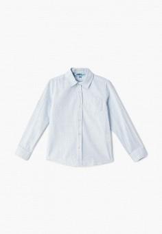 def7b60cd1351af Рубашка, Modis, цвет: голубой. Артикул: MO044EBEUAR5. Мальчикам / Одежда /