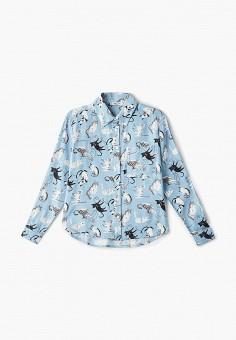 1046a0b58a824c8 Рубашка, Incity, цвет: голубой. Артикул: MP002XG00JJ1. Девочкам / Одежда /
