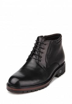 060a1d0d0 Ботинки классические, ditto, цвет: черный. Артикул: MP002XM0YCHC. Обувь /  Ботинки