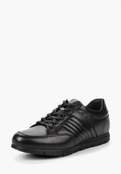 d7fe860b43df Кроссовки, Pierre Cardin, цвет  черный. Артикул  MP002XM23QWQ. Обувь