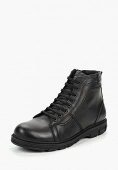 c785f552f9ee5c Ботинки, Alessio Nesca, цвет: черный. Артикул: MP002XM23SS9. Обувь / Ботинки