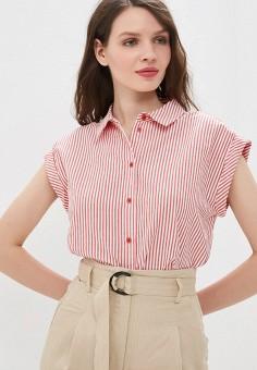 525cb6ecc7d Купить женские рубашки с коротким рукавом Zarina (Зарина) от 2 599 ...