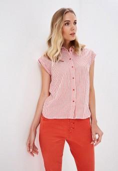 25d0807fb0d Купить женские блузы Zarina (Зарина) от 590 руб в интернет-магазине ...