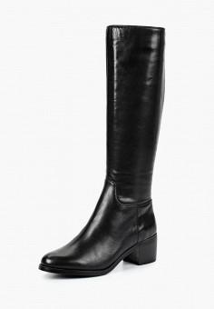 b588bdffb Сапоги, Pierre Cardin, цвет: черный. Артикул: MP002XW19CEV. Обувь / Сапоги