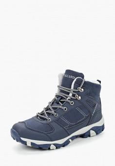 c2b39538 Ботинки трекинговые, T.Taccardi, цвет: синий. Артикул: MP002XW19CJN. Обувь