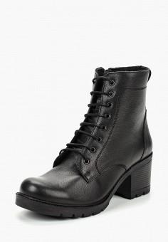 Ботильоны, Airbox, цвет: черный. Артикул: MP002XW1GRPY. Обувь / Ботильоны