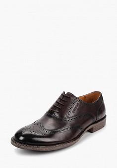 b466fde3c68a Купить мужские туфли Nord (Норд) от 7 599 руб в интернет-магазине ...