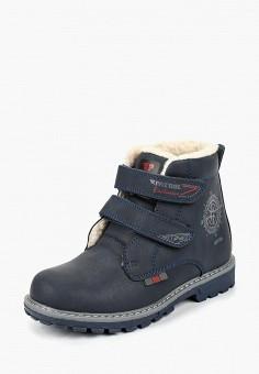 1ce6abded Ботинки, Patrol, цвет: синий. Артикул: PA050ABCHQC5. Мальчикам / Обувь /