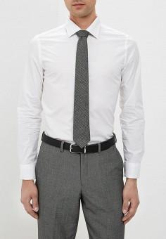 a860064206f Купить мужские рубашки с длинным рукавом Piazza Italia (Пиацца ...