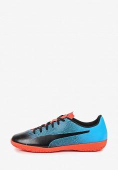 e45df59a6ba1 Бутсы зальные, PUMA, цвет  синий. Артикул  PU053AMDZVH1. Обувь   Кроссовки.  new. футбол