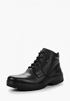 98f47b8c Ботинки, Ralf Ringer, цвет: черный. Артикул: RA084AMLCB77. Обувь / Ботинки
