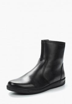 cffc8371f58e Купить мужскую обувь Salamander (Саламандер) от 2 830 руб в интернет ...