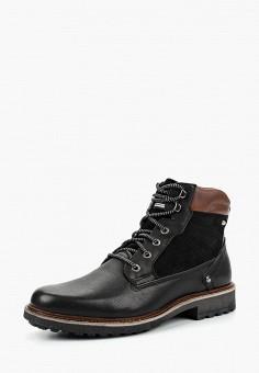 01764236c Ботинки, Salamander, цвет: коричневый. Артикул: SA815AMCLPK8. Обувь /  Ботинки