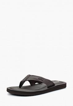 Сланцы, Skechers, цвет  коричневый. Артикул  SK261AMAUEQ3. Обувь    Резиновая обувь 86521599f7f