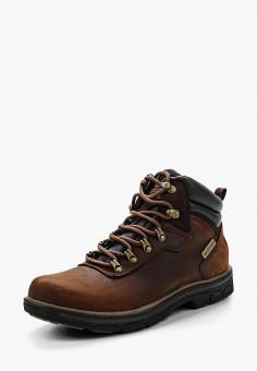 Ботинки, Skechers, цвет  коричневый. Артикул  SK261AMGAZ04. Обувь   Ботинки e141e7e5fdb