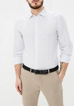 5b8152478d1 Купить мужские рубашки SPRINGFIELD (Спрингфилд) от 1 940 руб в ...