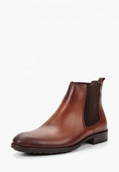 682e7e71 Ботинки, Tamboga, цвет: коричневый. Артикул: TA024AMCEVJ6. Обувь / Ботинки /