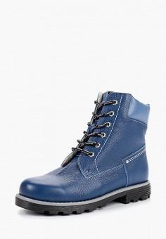 Ботинки, Tapiboo, цвет  синий. Артикул  TA036AKCZUI8. Девочкам   Обувь   ebddd3e5a45