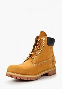 b739b031ad5f Ботинки, Timberland, цвет  коричневый. Артикул  TI007AMKF621. Обувь    Ботинки