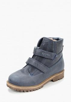 b94f9463e Ботинки, Totta, цвет: синий. Артикул: TO055ABCDZT5. Мальчикам / Обувь /