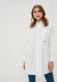 6e392afc5d340cc Рубашка, Tommy Hilfiger, цвет: белый. Артикул: TO263EWEOFO7. Одежда / Блузы