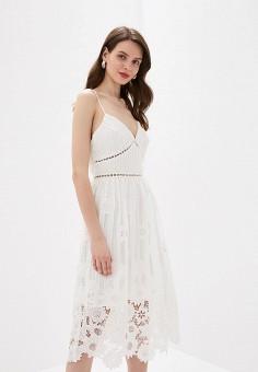 d5ab9b66129a9 Платье, True Decadence, цвет: белый. Артикул: TR033EWDFVV7. Одежда / Платья