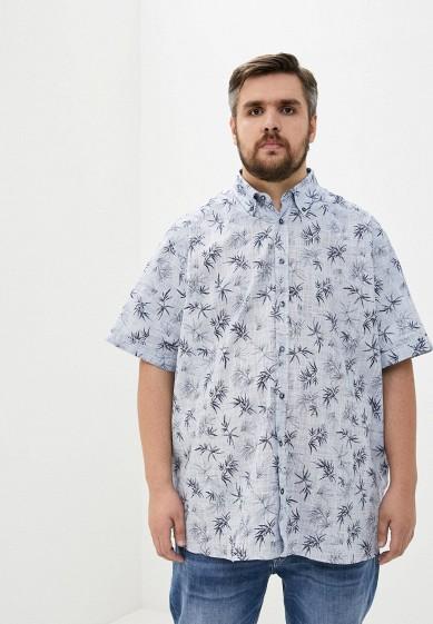 Maxfort Рубашка