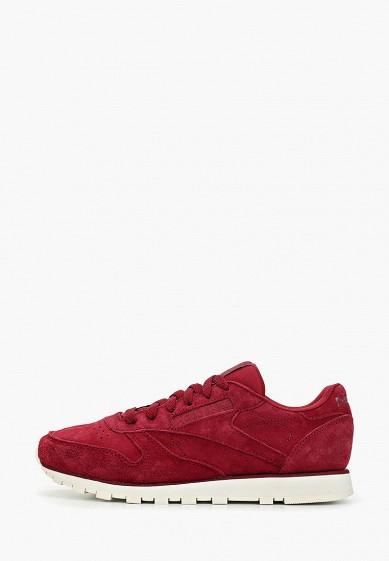 Кроссовки, Reebok Classics, цвет: бордовый. Артикул: RE005AWFKFE2. Обувь / Кроссовки и кеды / Кроссовки