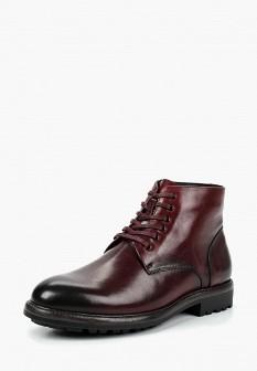 Мужские бордовые осенние кожаные ботинки