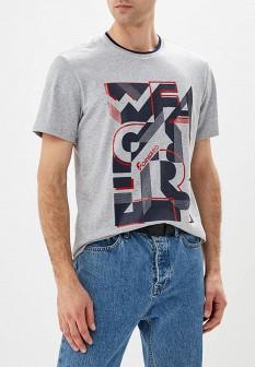 Мужская серая осенняя футболка