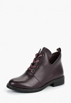 Женские фиолетовые осенние кожаные ботинки на каблуке