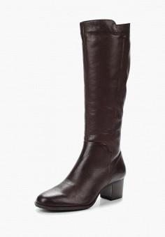 Сапоги, Accord, цвет: коричневый. Артикул: AC009AWVIA28. Обувь