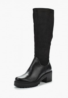 Сапоги, Accord, цвет: черный. Артикул: AC009AWVIA30. Обувь