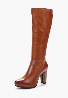 Сапоги, Accord, цвет: коричневый. Артикул: AC009AWVIA31. Обувь