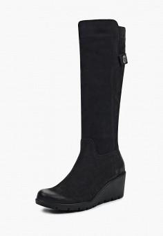 Сапоги, Accord, цвет: черный. Артикул: AC009AWVIA33. Обувь