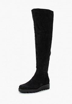 Ботфорты, Accord, цвет: черный. Артикул: AC009AWVIA34. Обувь