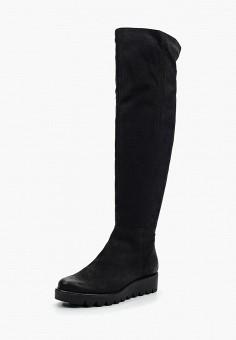 Ботфорты, Accord, цвет: черный. Артикул: AC009AWVIA35. Обувь