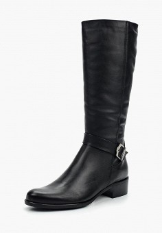 Сапоги, Accord, цвет: черный. Артикул: AC009AWVIA37. Обувь
