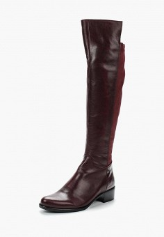 Ботфорты, Accord, цвет: бордовый. Артикул: AC009AWVIA41. Обувь