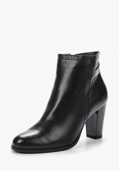 Ботильоны, Accord, цвет: черный. Артикул: AC009AWVIA42. Обувь