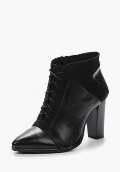 Ботильоны, Accord, цвет: черный. Артикул: AC009AWVIA45. Обувь